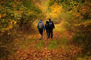 kids hiking 2