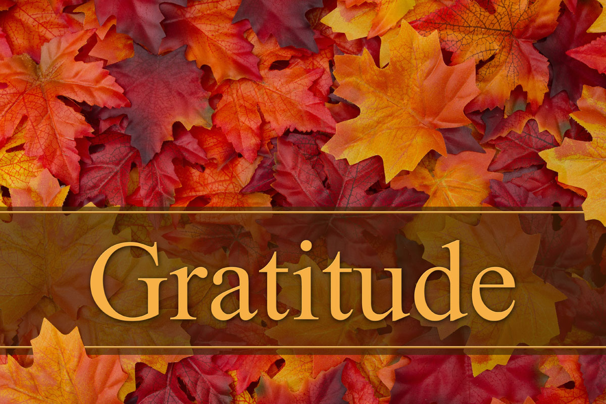 gratitude photo